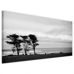 Solitary Trees 40x90