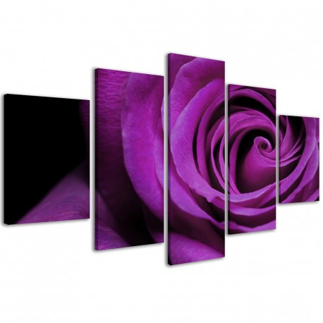 Purple Rose / 173 - 1